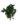korunmus-sarmasik-hedera-arborea-green-yesil-bitki